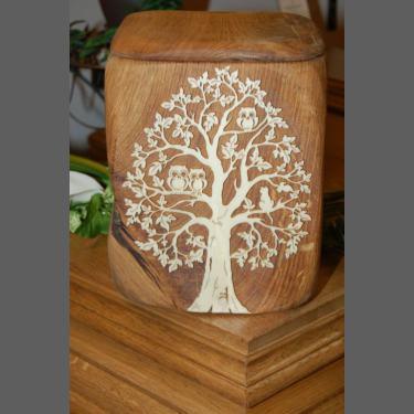 Modell Owl Tree
